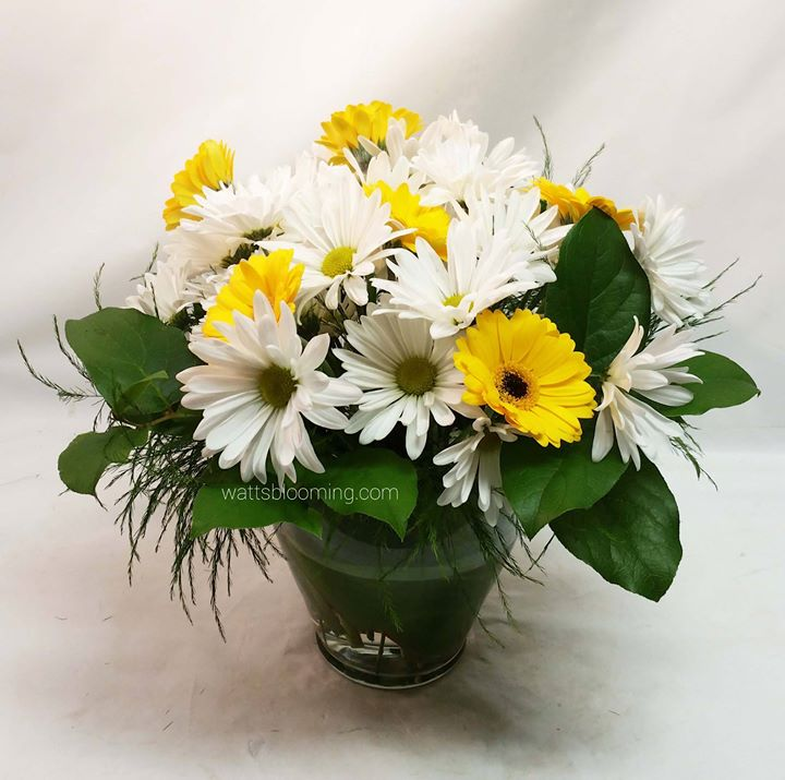 _Some simple white and yellow daisies to cheer up some one having a bad day__Thank you for your orde