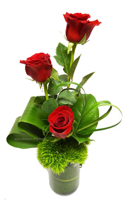 3 red roses valentines