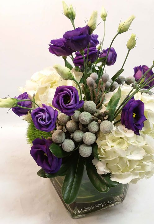 _A 4 month anniversary, she likes purples, and silver and cream were in our wedding__Thanks for your