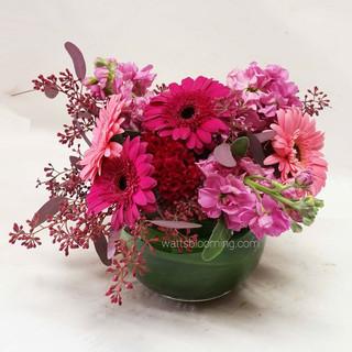 Bowl of pink