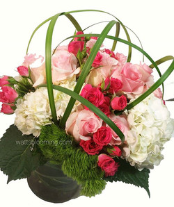 here again is why our dozen rose arrangements cost more than the standard FTD type rose bouquet
