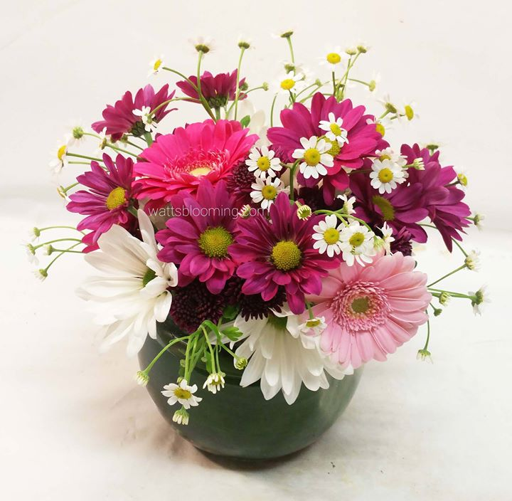 Something to wish someone a happy birthday, with daisies.jpg_Thanks for your order Julia