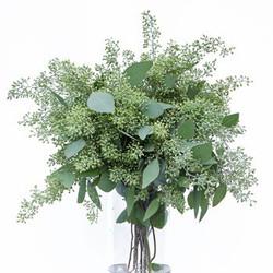 seeded euc green
