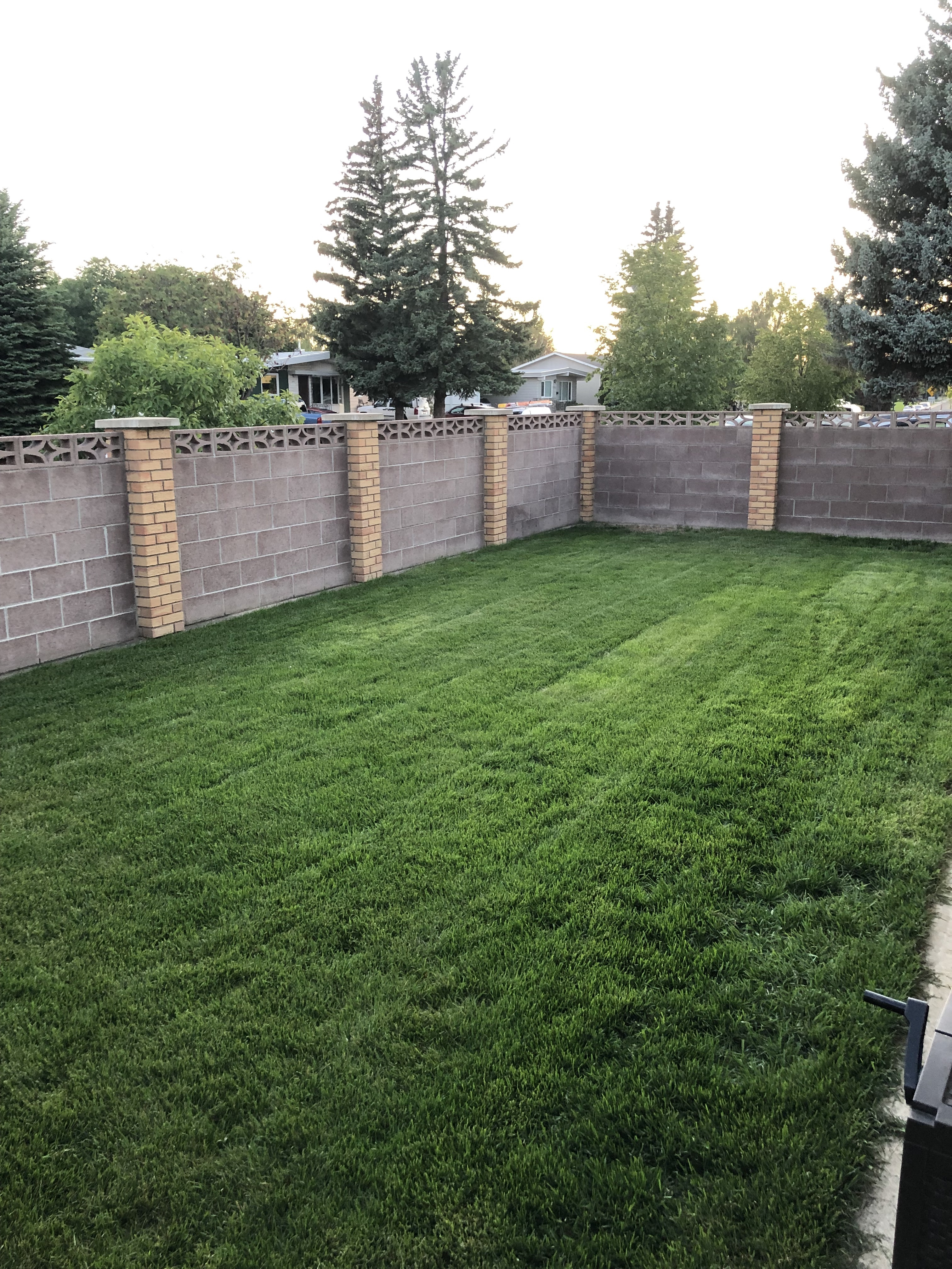 Ryans Lawn After