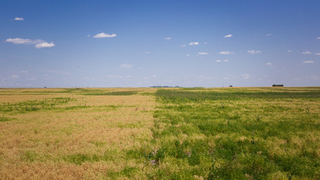 Biology for Drought Tolerance