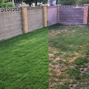 Applying ACF-SR To Your Lawn & Garden