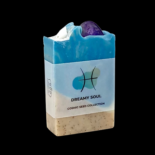 DREAMY SOUL ⭐️ FISCHE