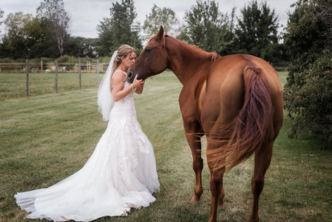 Lori Beneteau Photography wedding photographer London Ontario Strathroy Chatham horse bride