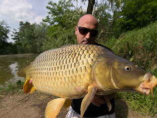 London-Urban-Carp-Fishing.jpg