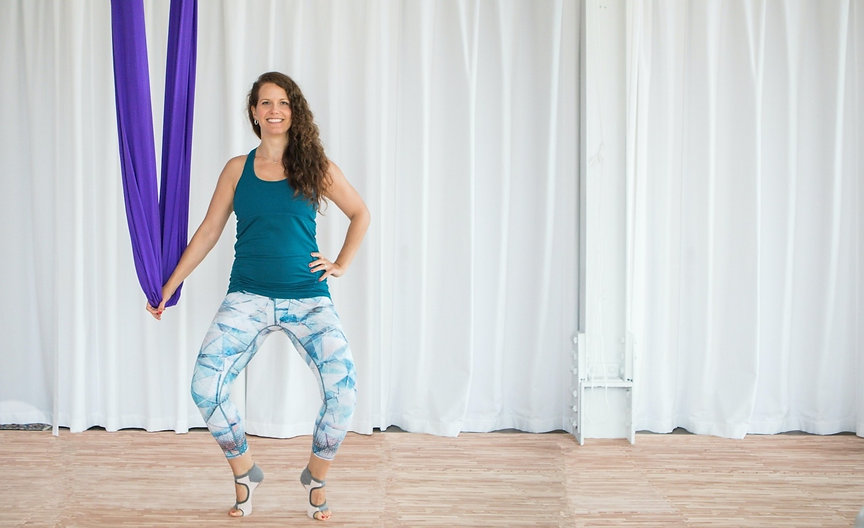 earth-and-aerial-yoga-barre-class-hudson