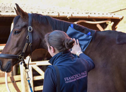Riders should be looking after themselves as well as they look after their horses