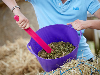 How Should You Be Feeding Your Horse?