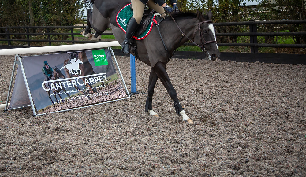 https://potters.co.uk/equestrian#carpet-recycling-1