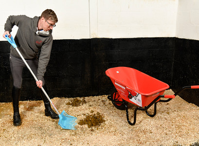 Top Time Saving Stable Management Tips