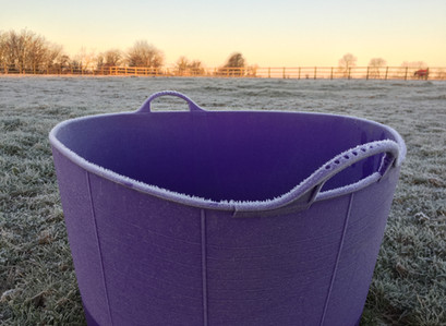 How To Prevent Your Horses Water Freezing This Winter