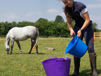 How to keep your horse hydrated this summer