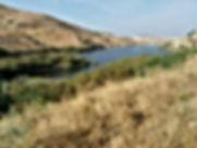 قطعة أرض للبيع في دير ابي سعيد ٧دونم مطله على فلسطين 48 بيسان والناصره والمعبر الشمالي بسعر ٢٢٠٠٠د