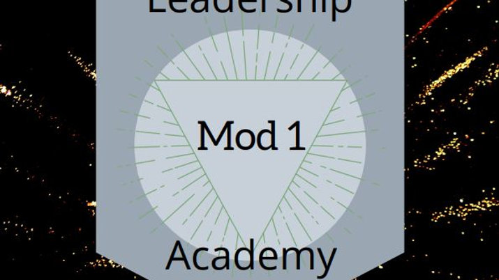Module 1 Work - Goals and Vision