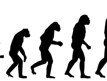 The Catholic Church and Science Part 3: Evolution