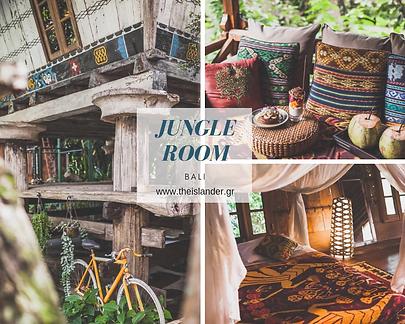 jungle room.png