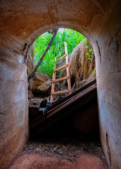 Escape Ladder