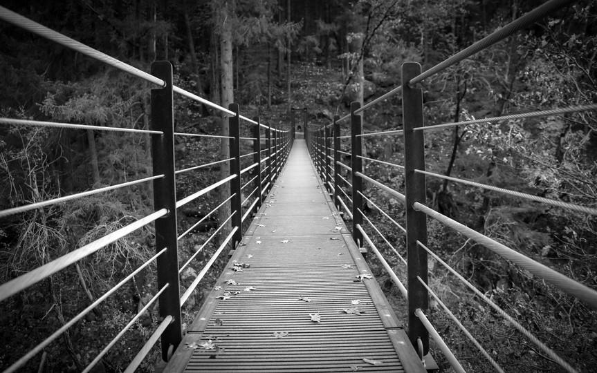 Linear Bridge