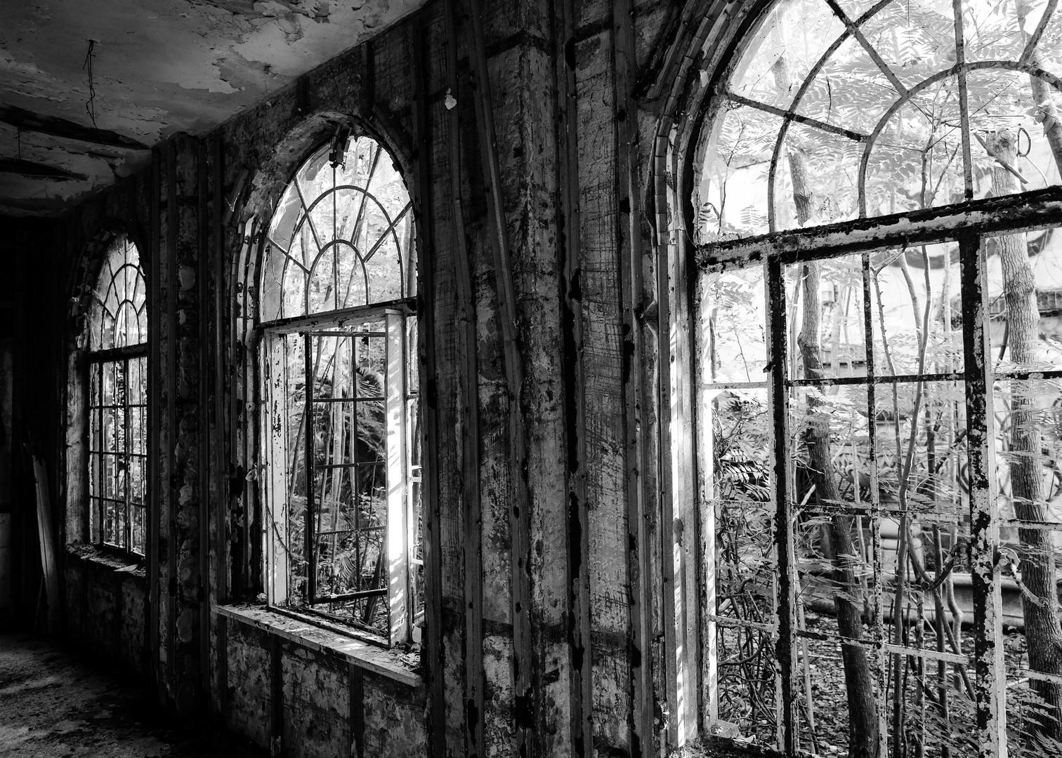 Abandoned Windows