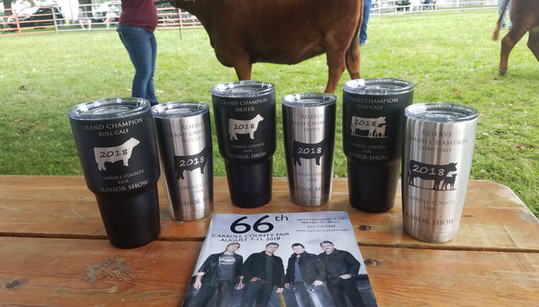 County Fair Show Awards- Etched Tumblers