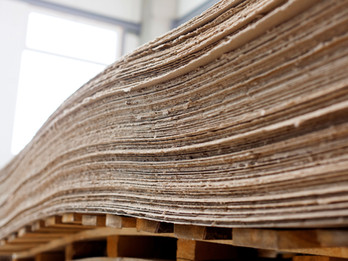 Fire Protection For Paper And Pulp Plants