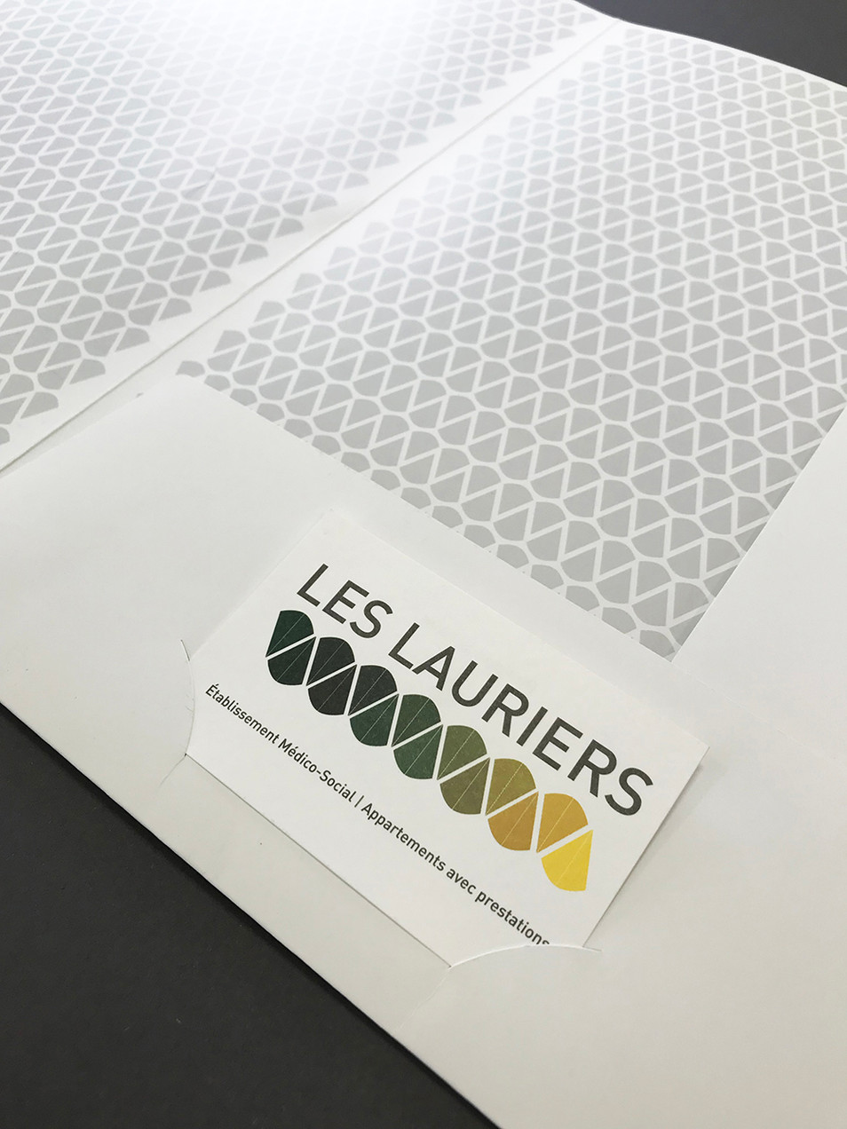 lauriers_2.jpg