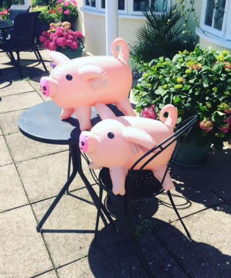 pass the pigs, pigs game, pass the pigs game, animals game, inflatable game