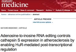 RNA editing in atherosclerosis