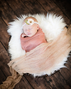 Baby Abigail-Columbia Newborn Photo