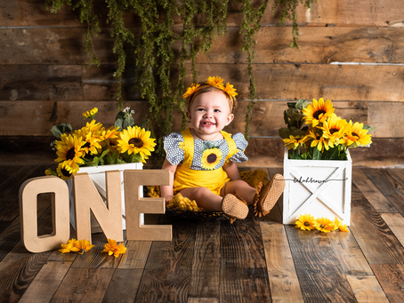 MAKE $1000 NEXT MONTH WITH MINI SESSIONS! | Professional Photography Tips