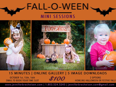 Pumpkin Stand Mini Sessions are here!