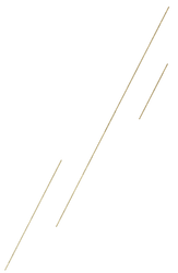 Gold-Lines.png