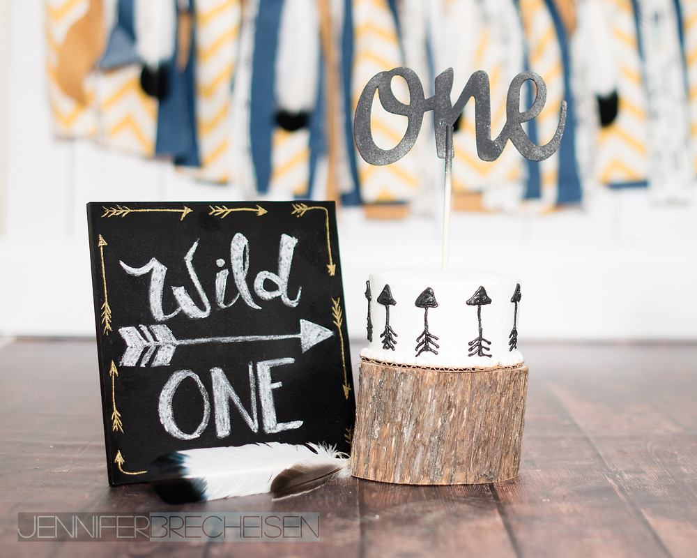 wild one cake smash children's photographer rock hill sc fort mill sc charlotte nc 1 year session