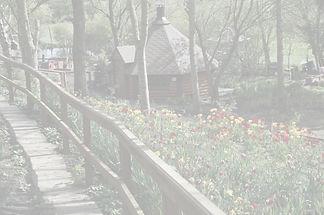 Secret Garden Walkway_edited.jpg