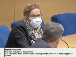 Commission ATDD - Auditions d'Annick Girardin Ministre de la Mer
