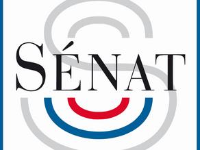 Le Sénat lance une foire aux questions à destination des élus dans cette période difficile.