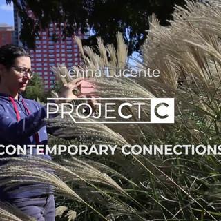 2019   Project C: Jenna Lucente