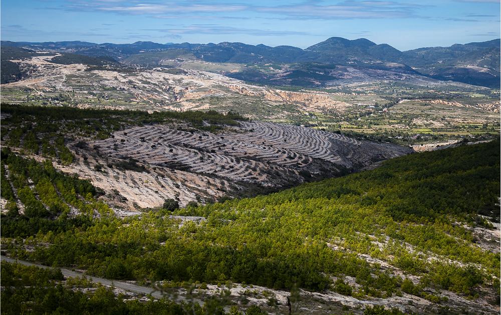 Reforestación en zonas semidesérticas, San Juan Bautista Coixtlahuaca, Oaxaca. Hugo Betanzos Martínez. Obtenido de: Estado que guarda el sector forestal en México 2020. CONAFOR 2021