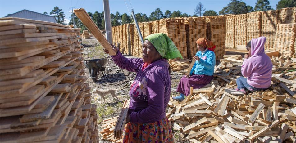Mujeres Tarahumaras trabajando en el Aserradero, Guachochi, Chihuahua. Jorge Alberto Mendoza Mariscal. Obtenido de: Estado que guarda el sector forestal en México 2020. CONAFOR 2021