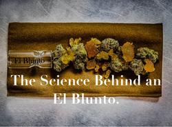 The Science of El Blunto