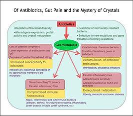 Antibiotics etc.jpg
