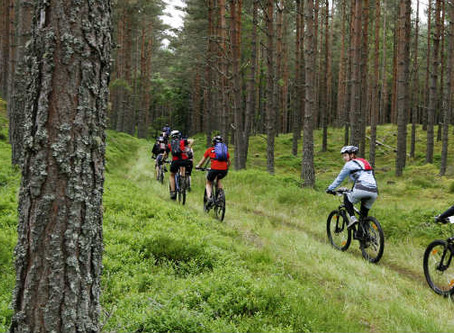 CANCELLED - Social Ride 22/8/20 - Beginner MTB Ride
