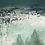 """Thumbnail: Copse """"Panoramique"""""""