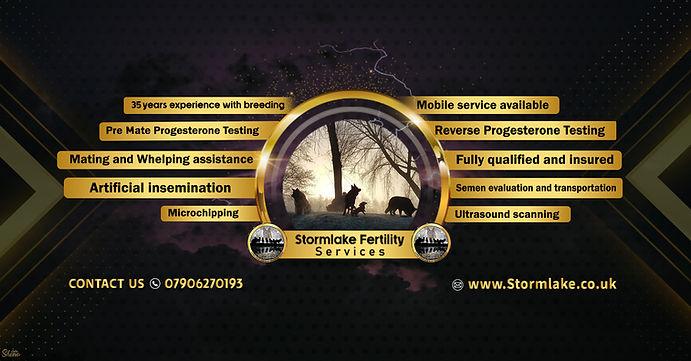 for web Banner.jpg