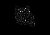 OWL CARTEL 2021 LOGO VARIATION FOUR.png