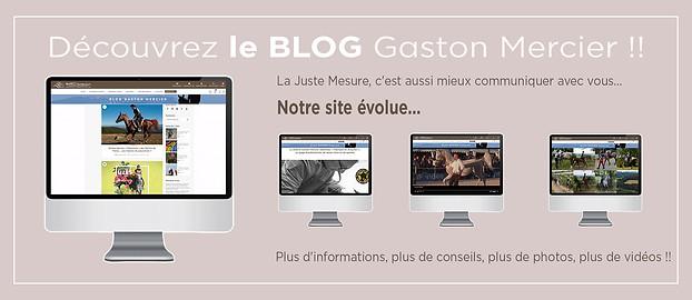 Promotion Digital